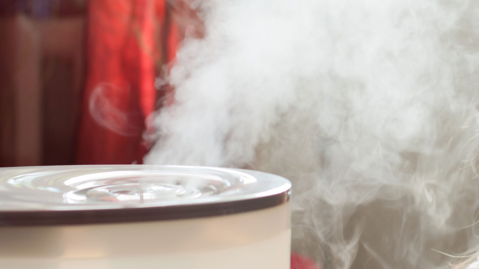 Humidifier with steam